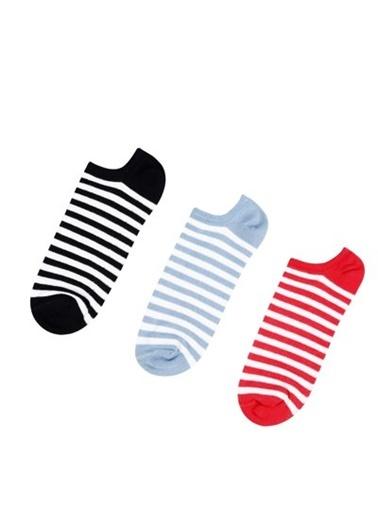 Çorap Colin's